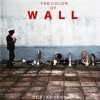 THE COLOR OF WALL